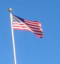flagwavesmall